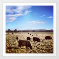 cows Art Prints featuring Cows by Aaron Spicer