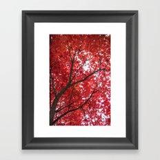 blazing red Framed Art Print