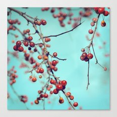 Hawberry Winter Tree Canvas Print