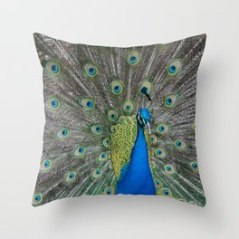 Fabulous and I know it Peacock Throw Pillow
