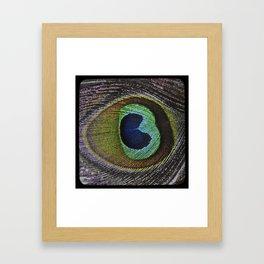 Peacock Feather Weathered Vintage TTV Framed Art Print