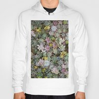 succulents Hoodies featuring Succulents by Tiffany Tremaine (birdy)