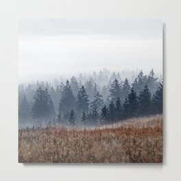 Lost In Fog Metal Print