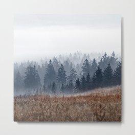 Lost In Fog Metal Print