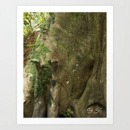 Legs up the Tree Art Print