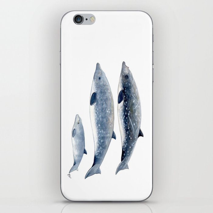 Blainville´s beaked whale iPhone Skin