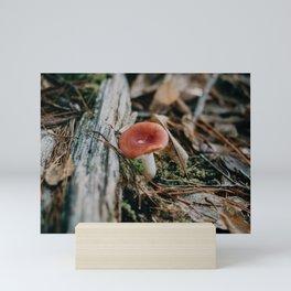 wild mushrooms Mini Art Print