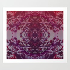 sunset in winter Art Print