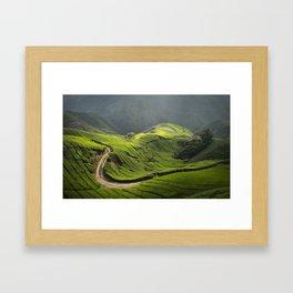 Malaysian Highlands Framed Art Print