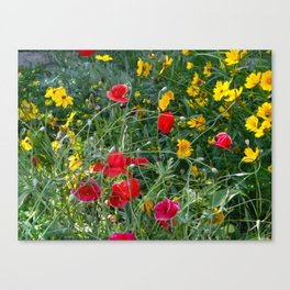 Wildflower Meadow Canvas Print
