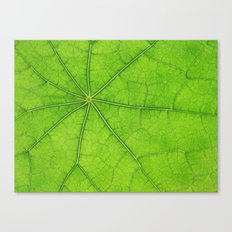 Green Leaf Veins 03 Canvas Print