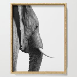 Black and white elephant portrait Serving Tray