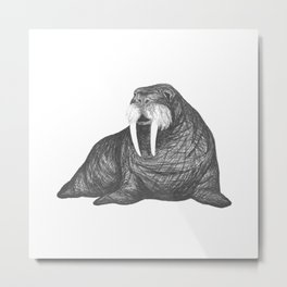 Frank Wallace in White | Walrus Drawing Metal Print