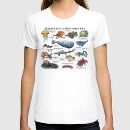 Marine Life of Monterey Bay T-shirt