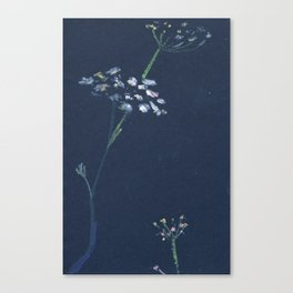 umbrella flower Canvas Print