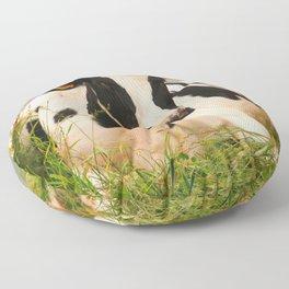 Holstein cow facing camera Floor Pillow