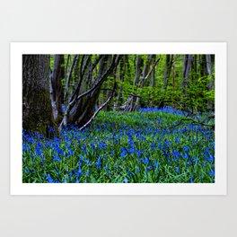 BLUE GLADE Art Print