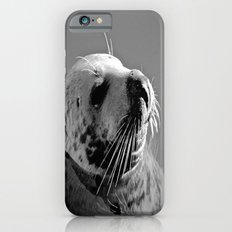 Howth Harbour Seal Slim Case iPhone 6s