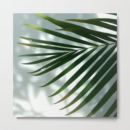 Palm Shadow Metal Print