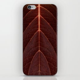 Red Autumn Leaves iPhone Skin