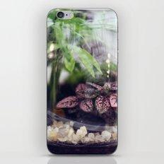 little world iPhone & iPod Skin
