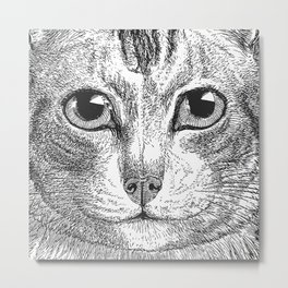 Black & White - Kitty Cat Close Up Metal Print