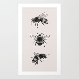 Three Bees Art Print