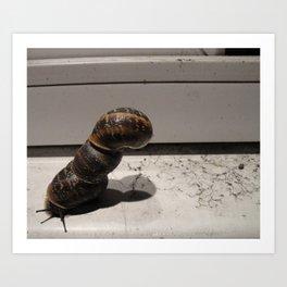 Snail Tower Art Print