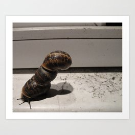 Snail Tower Art Print