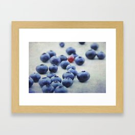 Blue berries with one red currant Framed Art Print