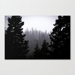 Frozen Pines Canvas Print