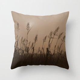 Fog Marsh Sunrise Throw Pillow