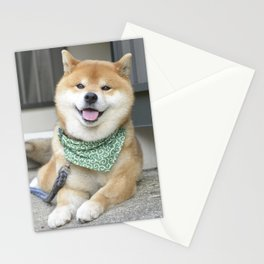 Smiling boy Stationery Cards