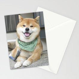 Smiling boy Stationery Cards
