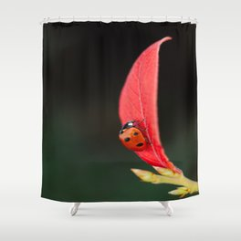 Ladybug On An Autumn Leaf Shower Curtain