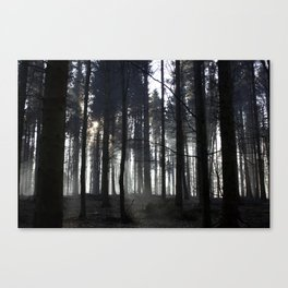 Deep Deep into the Forest. Canvas Print