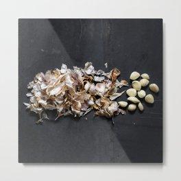 Garlic (exploded view) Metal Print