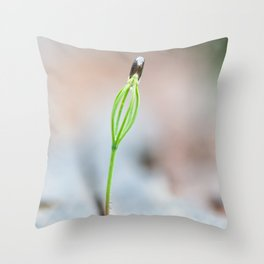 Little tiny green grass growing out of a tree stump in a spring. New life. Shallow depth of field Throw Pillow