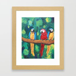 Parrot Framed Art Print