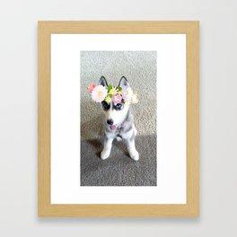 Husky puppy with flower crown Framed Art Print