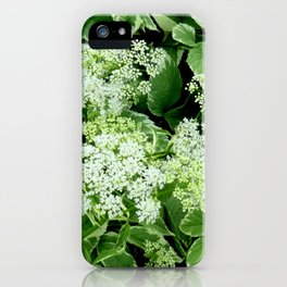 AWESOME DELICATE GREEN LACE FLOWERS iPhone Case