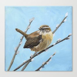 Brown House Wren Bird Art Canvas Print