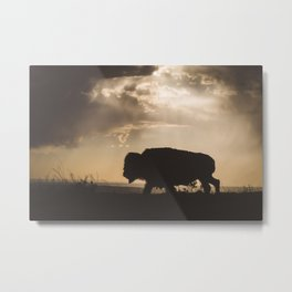 Bison in the Storm - Badlands National Park Metal Print
