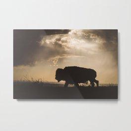 Bison in the Storm - Badlands National Park Metal Print