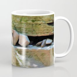 Alligator Rock 3 Coffee Mug