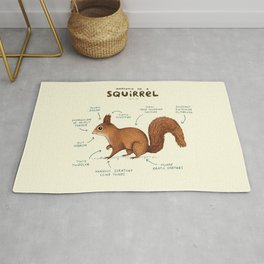Anatomy of a Squirrel Rug