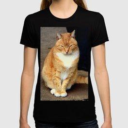Straighten Up T-shirt