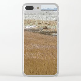 The Marshes. Clear iPhone Case