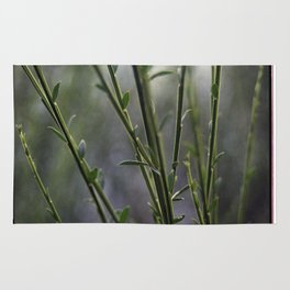 Young and Green Together Rug