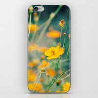 aperture iPhone & iPod Skins featuring Orange Cosmos by Laura Ruth